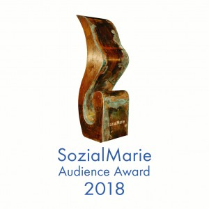SozialMarie Publikumspreise 2018: Die Siegerprojekte